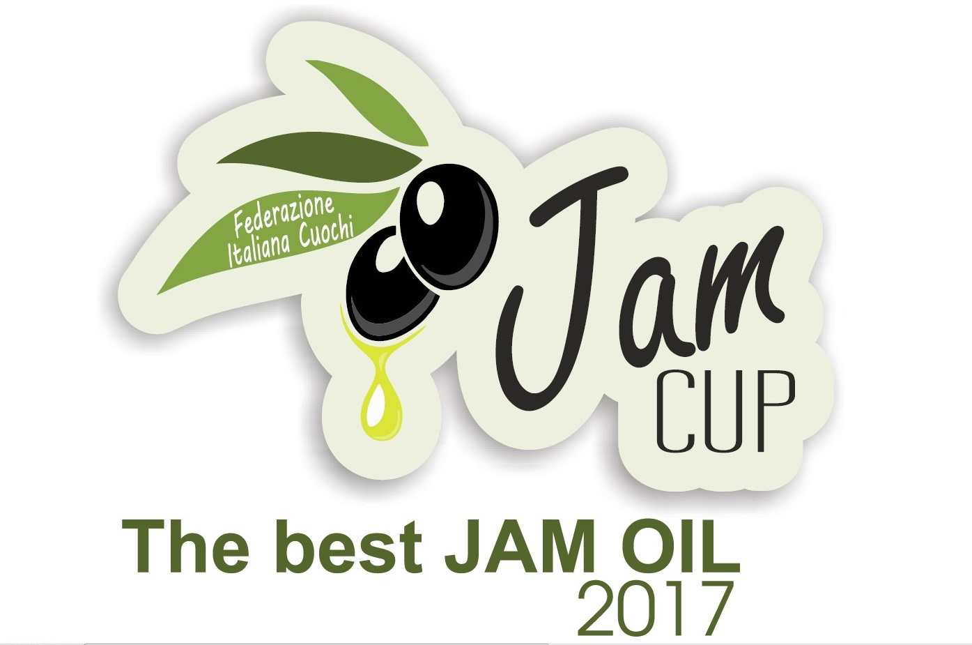 Jan Cup 2017